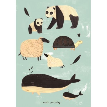 Poster Animaux - Mint