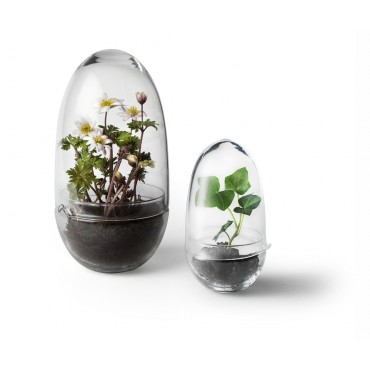Terrarium design (grand modèle)