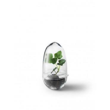 Terrarium design (petit modèle)