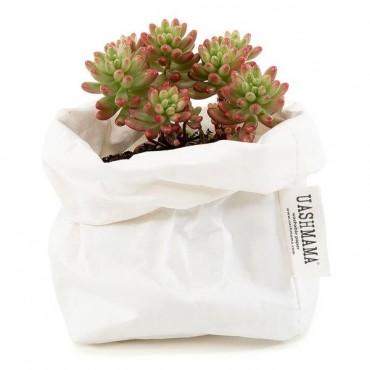 Paper Bag - Blanc