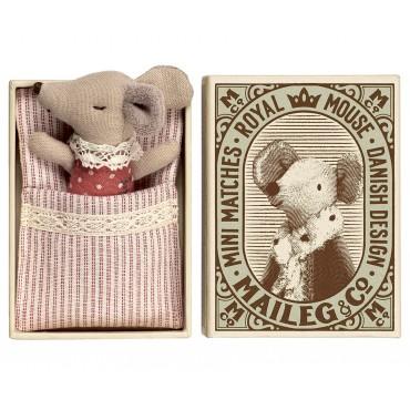 Petite souris bébé, sleepy-wakey dans une boite