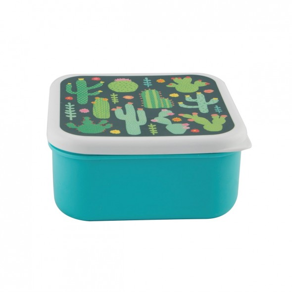 Lunch box carrée - Cactus