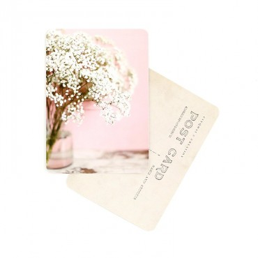 Carte Gypsophile
