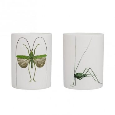 Set de 2 Photophore en porcelaine - Insecte