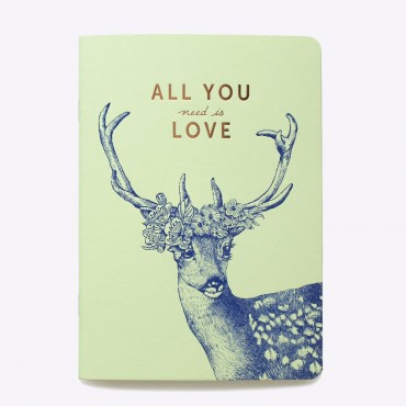 Cahier ligné All you Need is Love - Vert pistache