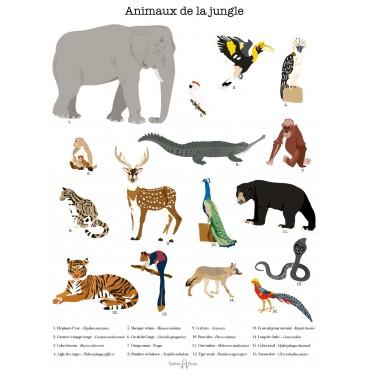 Affiche - Les animaux de la jungle (série limitée)