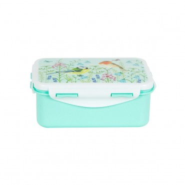 Lunch box rectangle  - Garden birds