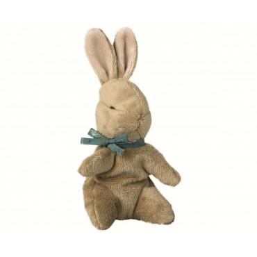 Bébé lapin avec son nœud bleu
