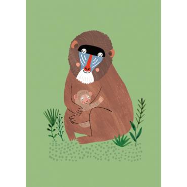 Carte postale - Mandrill et ses petits