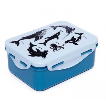 Lunch box - Sea animals