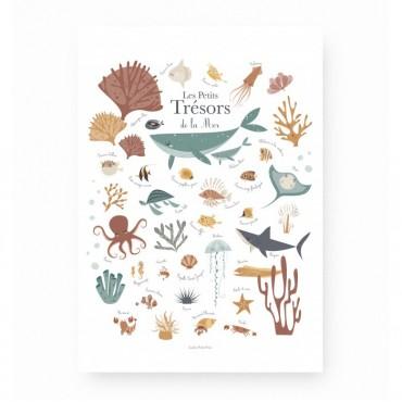 Affiche - Les petits trésors de la mer