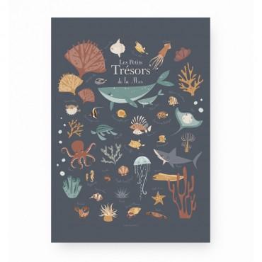 Affiche - Les petits trésors de la mer (bleu)