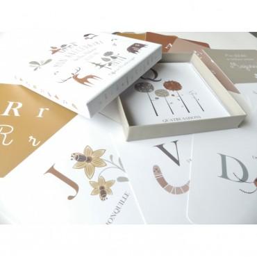 Coffret cartes alphabet - Mon abécédaire de la nature illustré