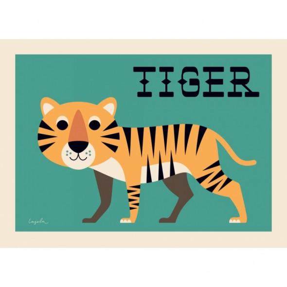 Poster Curious Tiger par Ingela P. Arrhenius