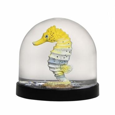 Boule à neige - Hippocampe