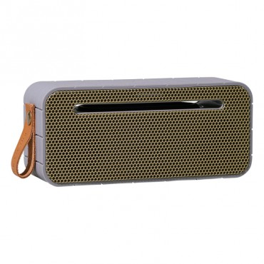 Lecteur portable Bluetooth aMOVE - Cool grey  & Gold